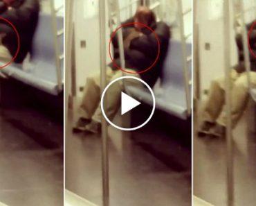 Enorme Rato Sobe Para Cima De Passageiro Que Adormeceu Durante Viagem De Metro Em Nova Iorque 4