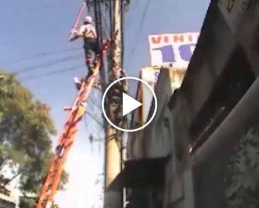 Este Eletricista Tem Tantas Vidas Quanto Um Gato! 3