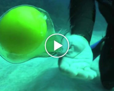 Sabe o Que Acontece Quando Se Parte Um Ovo Debaixo De Água? 4