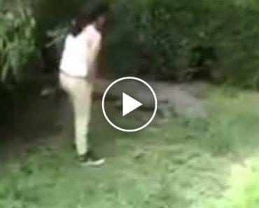Adolescente Idiota Invade Zona De Crocodilos Em Jardim Zoológico 1