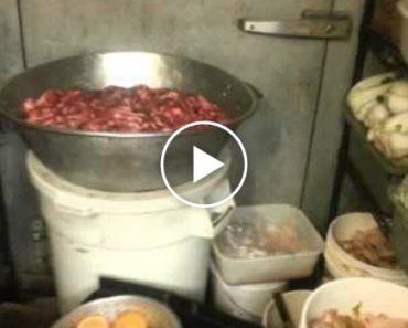 Homem Despedido Depois De Filmar As Péssimas Condições Da Cozinha De Um Restaurante Chinês 5