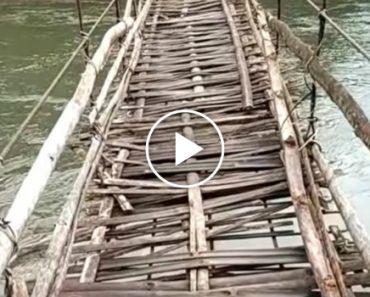 Só Com Muita Coragem É Que Alguém Se Aventura a Atravessar Uma Ponte Assim! 7