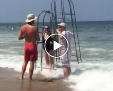 Turista Capta Momento Que Casal Tenta Mergulhar Com Jaulas Artesanais Para Evitar Tubarões 14