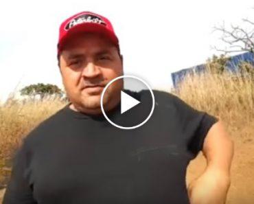 """Abelhas """"Ignorantes"""" Atacam Homem Que Experimenta Pela 1ª Vez o Novo Pau De Selfie 8"""