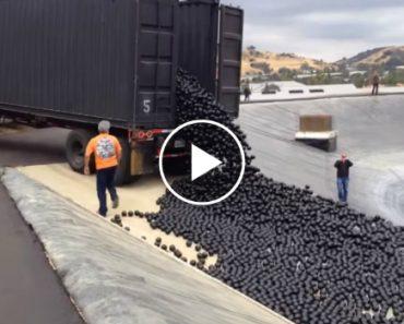Reservatório De Los Angeles Coberto Por 96 Milhões De Bolas Plástico Para Combater Evaporação 2