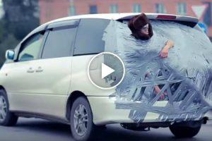 Russos Colam Amigo à Traseira Do Carro e Fazem Passeio Pela Cidade 10