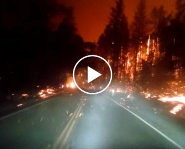 Condutor Passa Por Momento Assustador Ao Atravessar Incêndio 2