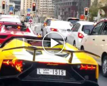 Lamborghini Pega Fogo Por Comportamento Idiota De Condutor 8