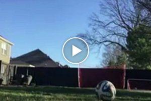 Ele Quis Mostrar Os Seus Truques De Futebol, Mas o Que a Sua Câmara Filmou Foi Muito Melhor 10