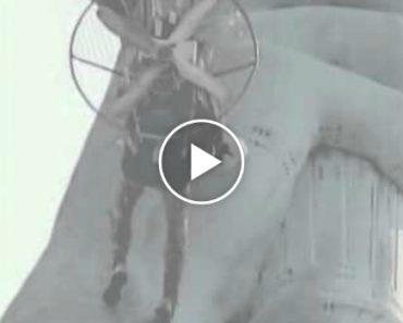 Paraquedista Fica Pendurado Na Estátua Da Liberdade e Ainda Vai Preso! 6