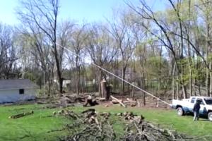 O Que Acontece Quando Não Se Quer Pagar a Um Profissional Para Cortar Uma Árvore 8