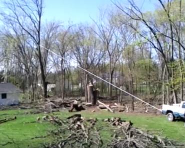 O Que Acontece Quando Não Se Quer Pagar a Um Profissional Para Cortar Uma Árvore 2