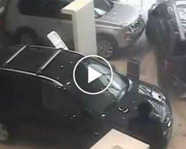 Cliente Destrói Stand Com o Carro Como Forma De Protesto 4