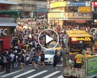 O Que Acontece Quando Um Pokemon Raro Aparece Em Taiwan 1