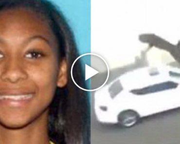 Adolescente é Detida Após Divulgar Vídeo a Atirar Gato Do 3 Andar 6