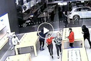 Loja da Apple Assaltada Duas Vezes Em Poucos Dias e Apenas Em 15 Segundos 9