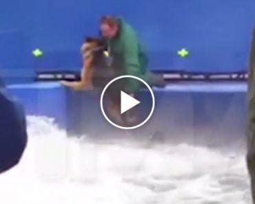 """Imagens Da Gravação Do Filme """"A Dog's Purpose"""" Mostram Cão Aterrorizado a Ser Forçado a Fazer Cena 3"""