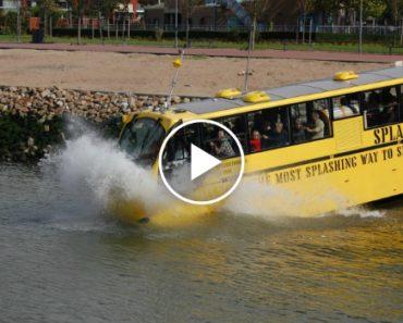 Em Roterdão Os Passageiros Não Precisam De Mudar De Veículo Para Andar Na Estrada e No Rio 7
