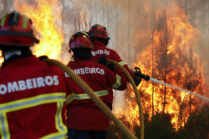 Pedrógão Grande: Portugal Recusou Ajuda De Bombeiros Espanhóis 9