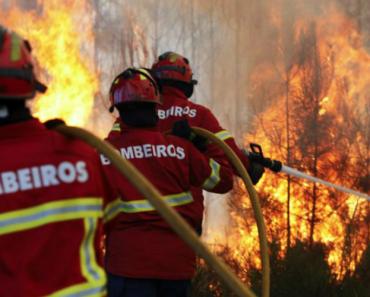 Pedrógão Grande: Portugal Recusou Ajuda De Bombeiros Espanhóis 7