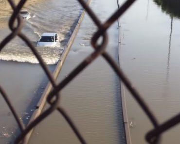 Condutor De Prius Deixa Todos Pasmados Ao Conseguir Atravessar Estrada Inundada 1