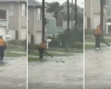 Homem Decide Dar Uso Ao Seu Soprador De Folhas Durante Furacão Irma 9