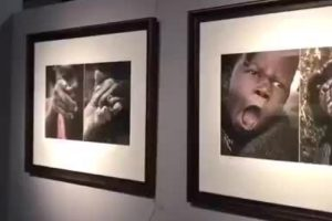 Museu Chinês Acusado De Racismo Por Exposição Que Compara Negros a Animais 10
