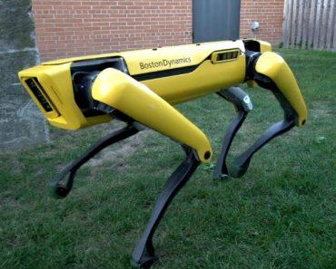 """Boston Dynamics Apresenta Novo """"Cão"""" Robótico. E Está Para Breve... 7"""