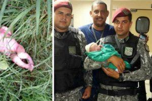Trabalhadores Encontram Recém-nascido Abandonado No Meio Das Ervas 10