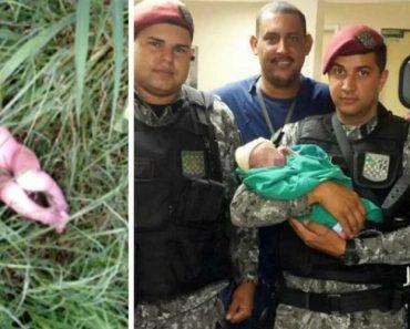 Trabalhadores Encontram Recém-nascido Abandonado No Meio Das Ervas 6