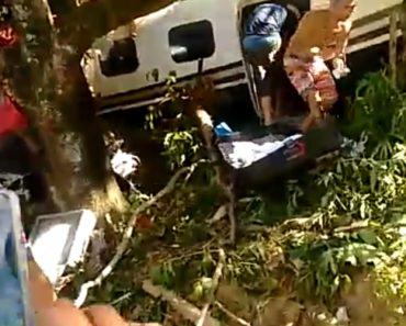 Alguns Moradores Aproveitam Para Roubar Carga De Avião Acidentado Que Causou A Morte De 2 Pessoas 6