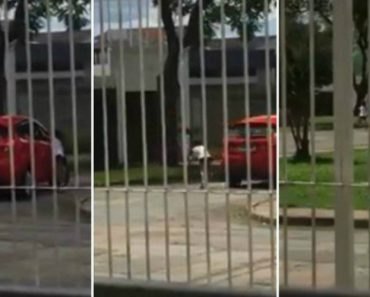 Vídeo Mostra Menina a Implorar Para Não Ser Deixada Na Rua Pela Mãe 1
