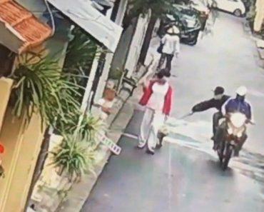 Motociclistas Arrancam Cão Das Mãos Da Dona Que Passeava Na Rua Para Ser Vendido No Mercado De Carne 1