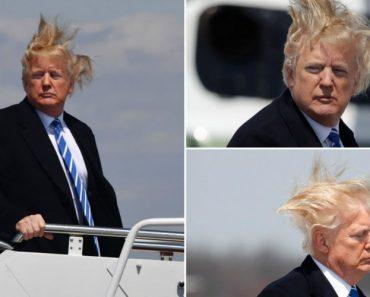 Cabelo De Trump Voltou a Fazer Das Suas. E a Internet Está a Adorar 2