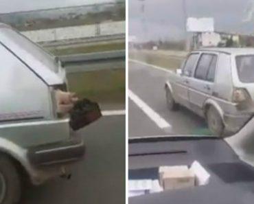 Porco Transportado Na Bagageira De Carro Tenta Encontrar Uma Saída Através Da Abertura Do Farol Desencaixado 3