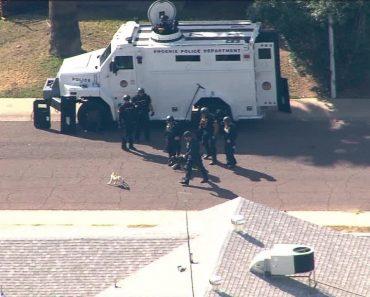 Pequeno Cão Tenta Atacar Cão Da SWAT Em Phoenix 2
