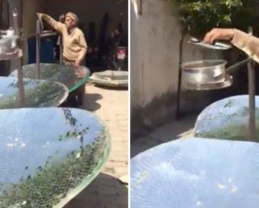 Paquistaneses Utilizam Espelhos Parabólicos Para Cozinhar a Energia Solar 8