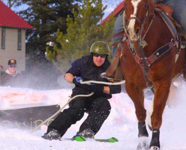 Já Alguma Vez Ouviu Falar Em Skijoring? 8