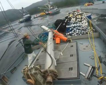 Disputa Entre Pescadores Termina Na Colisão De 3 Barcos 8