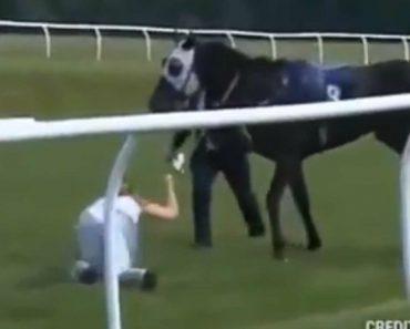 Apresentadora De Televisão Atira-se Para a Frente De Cavalo Em Fuga 2