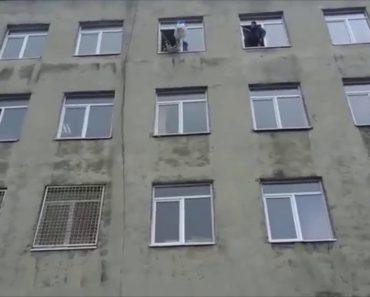 Homem Atira Gato Da Janela De 4º Andar Depois De o Prender a Um Paraquedas 4