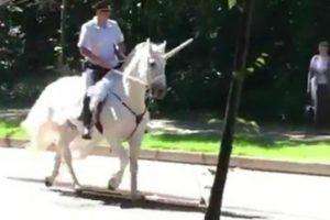 Polícia é Visto a Patrulhar Rua Enquanto Cavalga No Seu Unicórnio 9