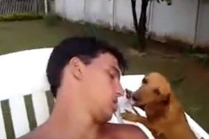 Nunca Adormeça Perto De Um Cão, Nunca Se Sabe o Que Pode Acontecer 10