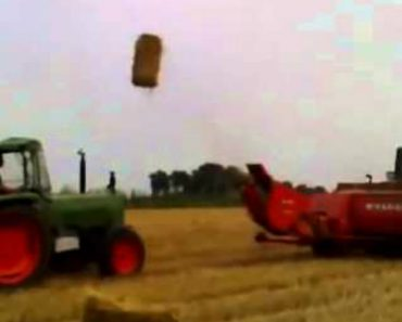 Agricultores Mostram Como Pode Ser Divertido Trabalhar Com Fardos De Palha 6