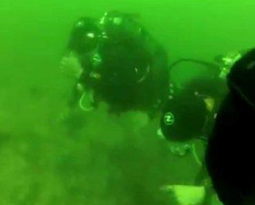 Mergulhadora Tem Ataque De Pânico a 15 Metros De Profundidade 6