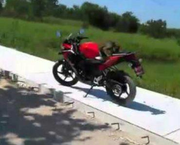 Macaco Vinga-se Depois De Um Homem Lhe Atirar Com 1 Sapato Para o Tirar De Cima Da Moto 2