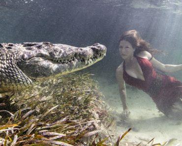 Modelo Faz Sessão Fotográfica Arriscada Ao Posar Dentro De Água Com Crocodilos 2