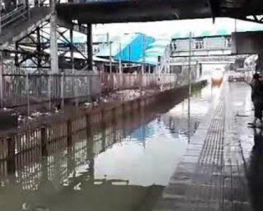 Passagem De Comboio Em Estação Alagada Deixa Passageiros Completamente Encharcados 3