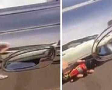 Condutor Encontra Brinde Indesejado Ao Tocar No Puxador Da Porta Do Carro 4