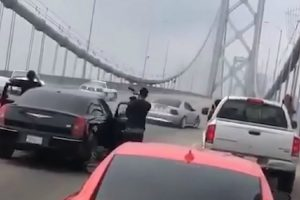 Proprietários De 3 Mustangs Interromperam Trânsito Na Ponte… Para Fazer Piões 10